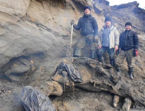 Russian Boy Discovers 30,000-Year-Old Frozen Woolly Mammoth
